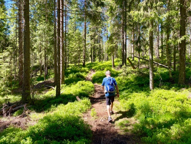 Naturlig luksus i Nordmarka – ReiseKick